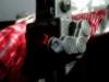 Android Kamera-App Magix CameraMX-Testaufnahme / Orton